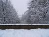 winter2005-3